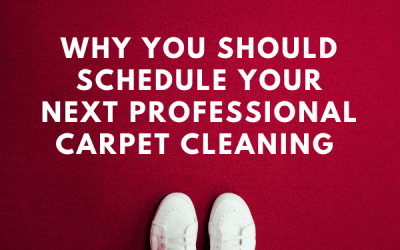 Why You Should Schedule Your Next Professional Carpet Cleaning